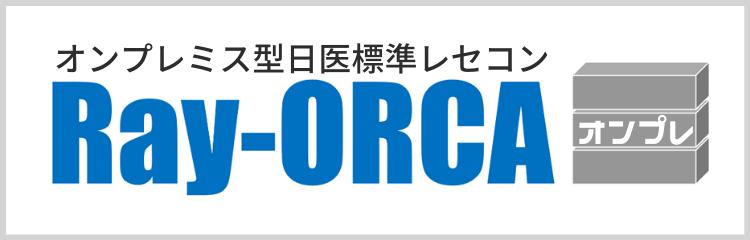 Ray-ORCA オンプレ-2